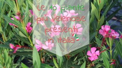 piante velenose italia